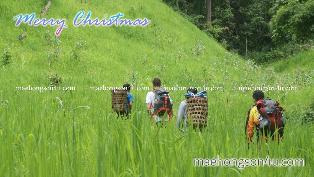 trekking in mae hong son